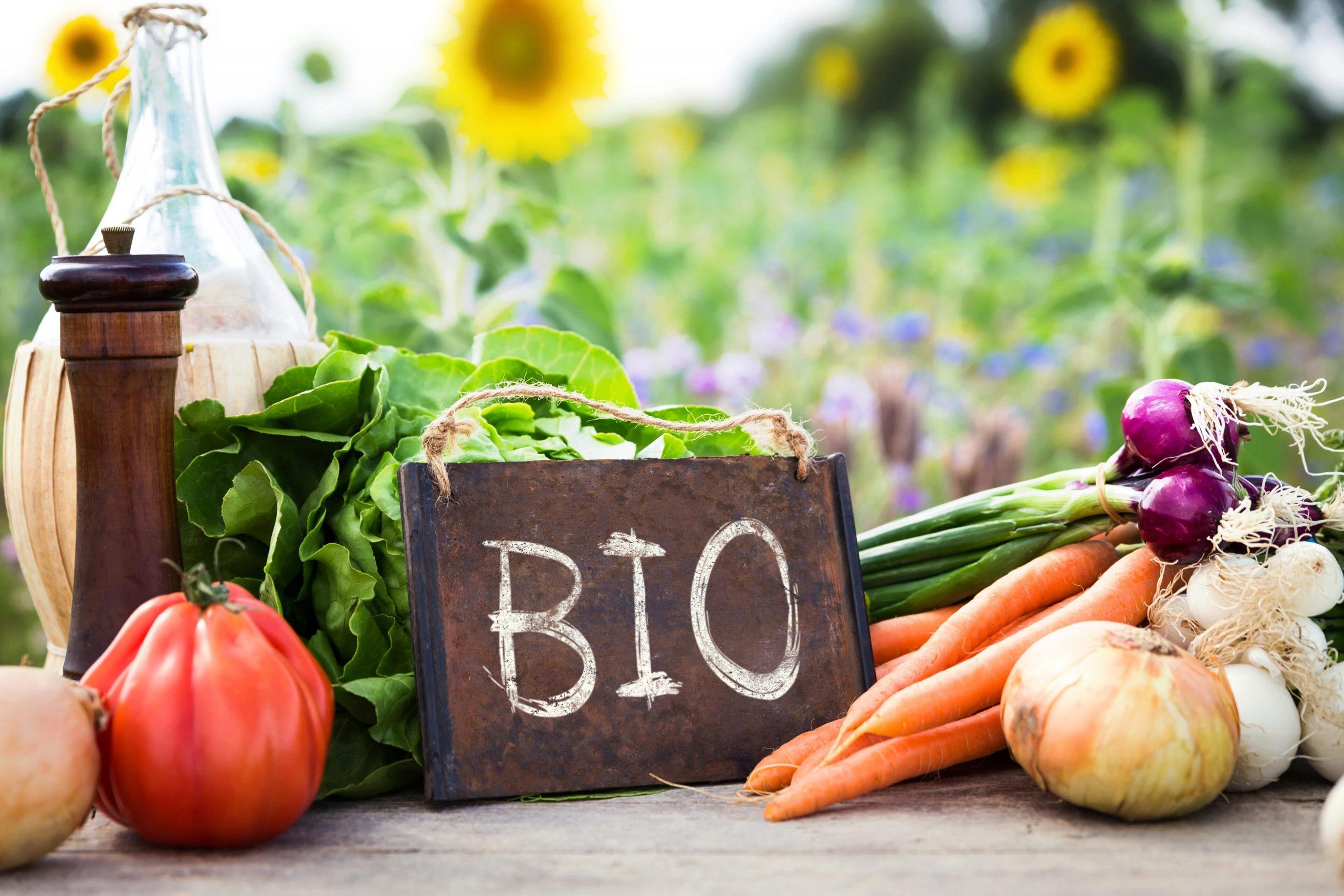 Mit is jelent az, hogy bio élelmiszer?